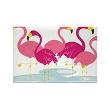 Flamingos Rectangle Magnet