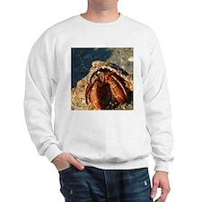 Mad Crab Sweatshirt