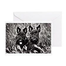 Sisters - Scottish Terriers in BW Greeting Card