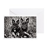 Sisters - Scottish Terriers in BW Greeting Cards (