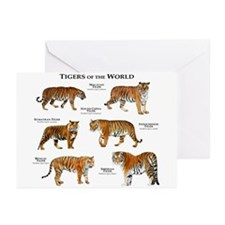 Tigers of the World Greeting Cards (Pk of 10)