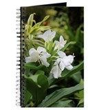 White Ginger Lily Journal