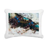 Blue-knee hermit crab - Pillow