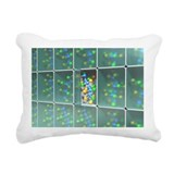Search for a new drug, conceptual image - Pillow