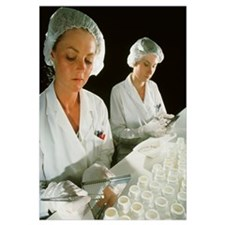 Female technicians counting pills into a bottle
