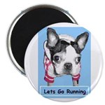 LETS GO RUNNING BOSTON TERRIER LOOK Magnet
