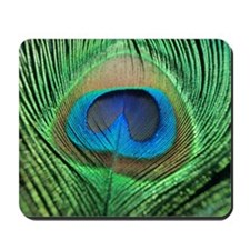 Peacock Feather Mousepad