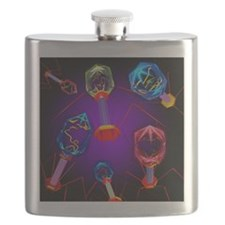 Bacteriophages - Flask