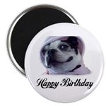 HAPPY BIRTHDAY BOSTON TERRIER LOOK Magnet