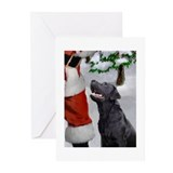 Cute Black lab christmas Greeting Cards (Pk of 20)