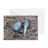UP CLOSE & DIRTY Greeting Cards (Pk of 10)