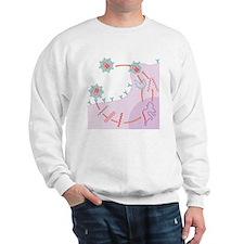 HIV replication - Sweatshirt