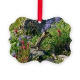 Golden-mantled ground squirrel feeding - Ornament