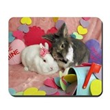 Olivia and Skyler, Valentine Bunnies Mousepad