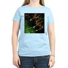 Mouse brain neurons, light micrograph - T-Shirt