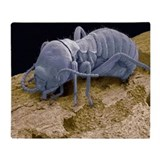 Worker termite, SEM - Throw Blanket