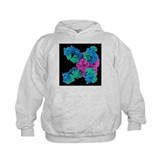 Flu virus surface protein and antibody - Hoodie
