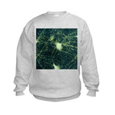 Motor neurons, light micrograph - Sweatshirt