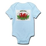 ...Welsh And Proud... Onesie