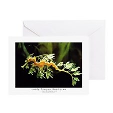 GreetingCards(Pk of 10)leafyseahorse