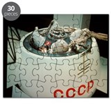 One of the USSR's Venera space probes - Puzzle