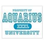 Aquarius University Property Small Poster