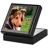 Sheltie &amp; Sheep Keepsake Box