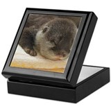 Sleeping Otter Keepsake Box