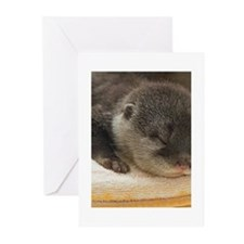 Sleeping Otter Greeting Cards (Pk of 10)