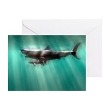 Megalodon shark and great white - Greeting Cards (