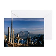 Mount St Helens volcano - Greeting Cards (Pk of 20