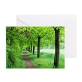 Woodland trail - Greeting Cards (Pk of 20)
