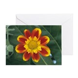 Collerette dahlia - Greeting Card
