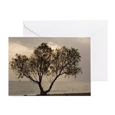 Tamarisk tree - Greeting Card