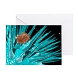 Flu viruses - Greeting Card