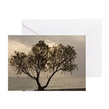 Tamarisk tree - Greeting Cards (Pk of 10)