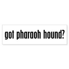 Got Pharaoh Hound? Bumper Bumper Sticker