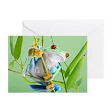 Red-eyed tree frog - Greeting Cards (Pk of 10)
