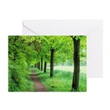 Woodland trail - Greeting Cards (Pk of 10)
