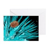 Flu viruses - Greeting Cards (Pk of 10)