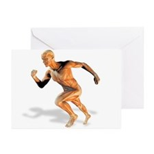 Muscular system - Greeting Cards (Pk of 10)