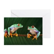 Red-eyed tree frogs - Greeting Cards (Pk of 10)