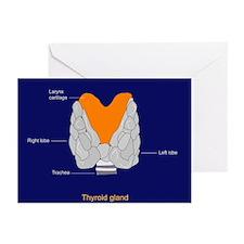 Thyroid gland, artwork - Greeting Cards (Pk of 10)