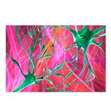 Nerve synapses, artwork - Postcards (Pk of 8)