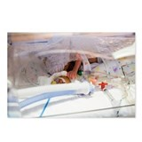 Premature baby - Postcards (Pk of 8)