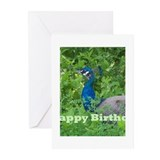 Cute Peacock birthday Greeting Cards (Pk of 10)