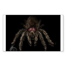 Chilean Rose Hair Tarantula Decal