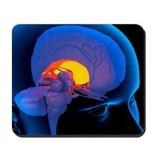 Globus pallidus in the brain, artwork - Mousepad