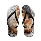 Cool Squirrel Flip Flops