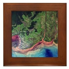 River deltas in Borneo - Framed Tile
